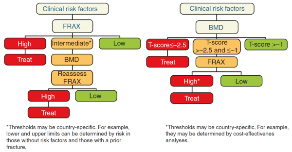 Approaches to the use of FRAX®