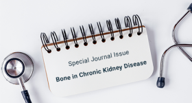special issue bone and chronic kidney disease